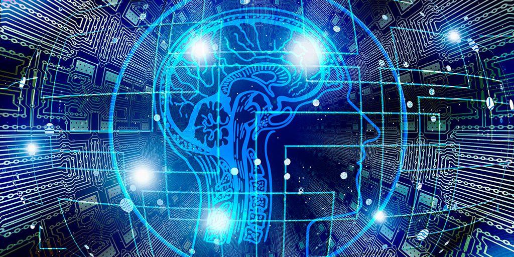 Plasticidad Neuronal  y Cultura